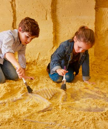 activiteiten kinderen valkenburg